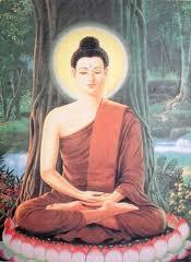 buddha_tree1