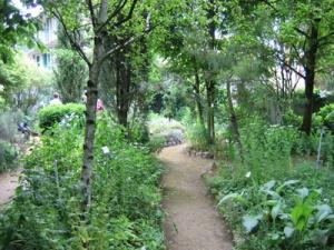 jardin-botanique-de-sannois-des-plantes-medicinales-1